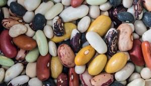 f33c28d-beans