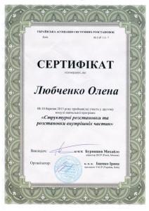 6_sert_stryktyrkabyrnyashev