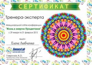 sertfestivaljiznvenergiiprocvetaniya29.01.15