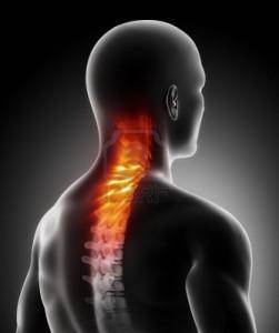 boli-v-spine_3